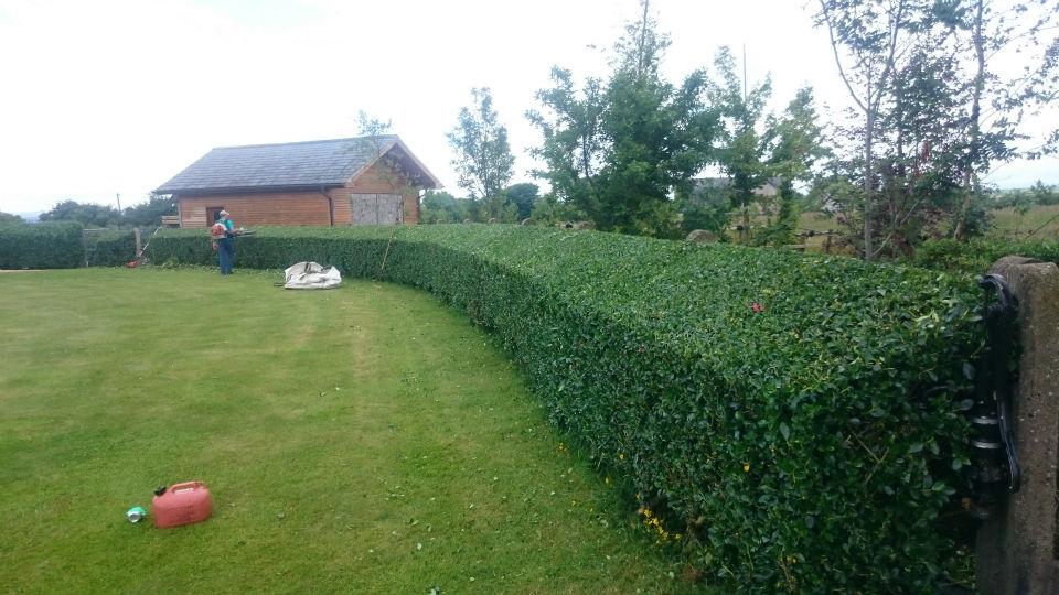 Landscape Gardener Images
