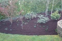 LandscapeGardner-048