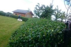 LandscapeGardner-085