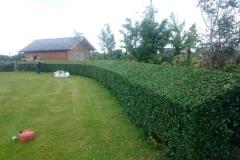 LandscapeGardner-086